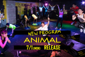 NEW PROGRAM「ANIMAL」リリース決定